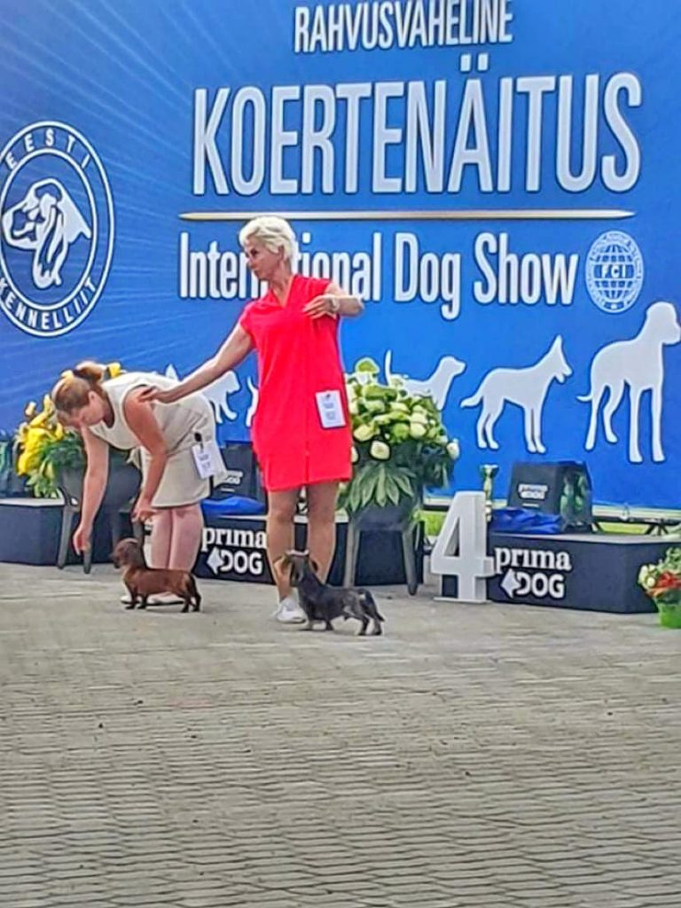 "15.08.2020 International Dog Show ""Tallinn Winner 20"""